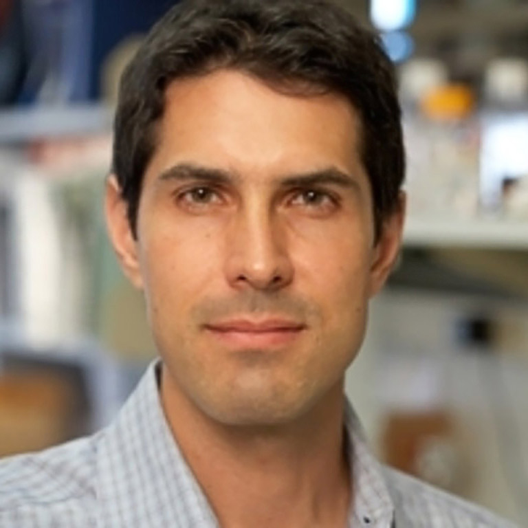 2014 Gill Transformative Investigator Award Recipient, Scott Sternson, Ph.D.